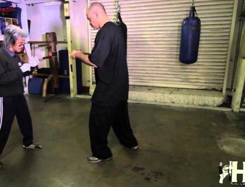 Wing Chun Chi Sau 2