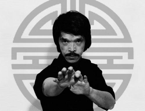 Wing Chun Principles
